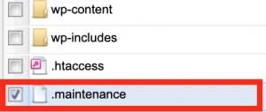 maintenanceファイル